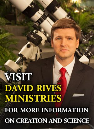 Learn More about David Rives Ministries